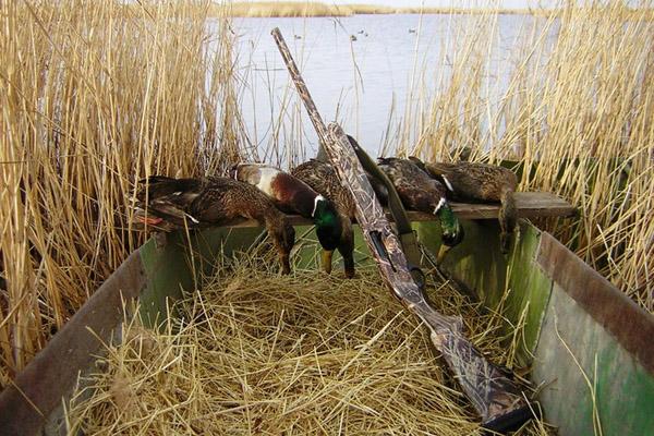 Осенняя охота в Астрахани