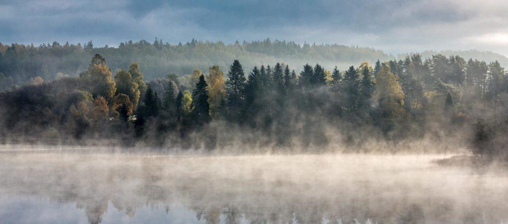 Что посмотреть в Эстонии, за пределами Таллина?